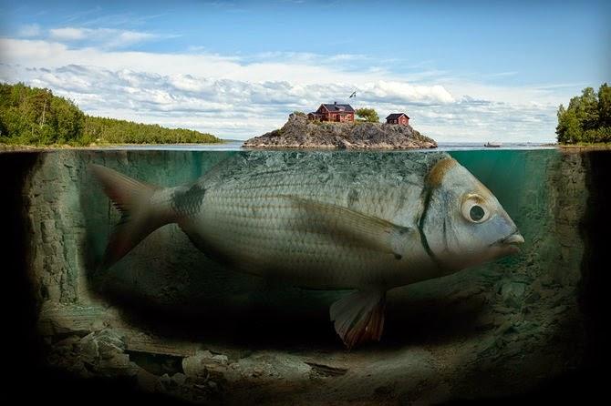 حضرت یونس علیہ السلام مچھلی کے پیٹ میں